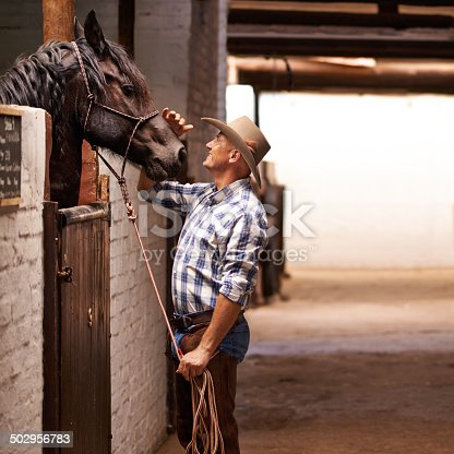 A caring ranch hand attending to a horse in the stablehttp://195.154.178.81/DATA/i_collage/pi/shoots/783520.jpg