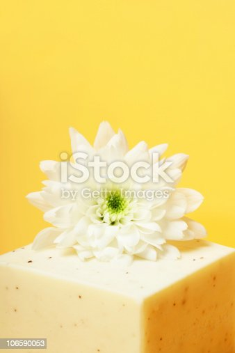 white Margarite, white soap on yellow background, with space for words