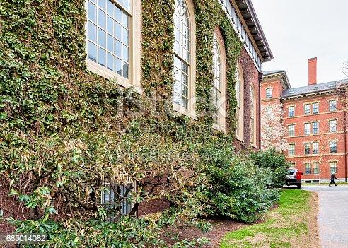 683709204istockphoto Ivied Building at Harvard Yard of Harvard University 685014062