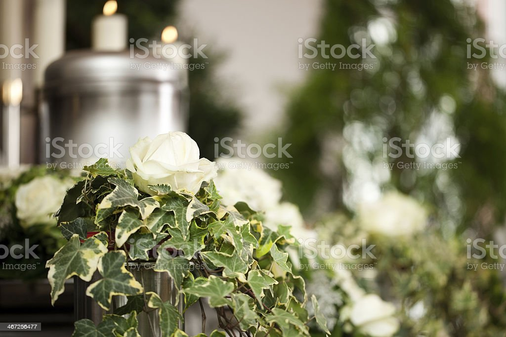 Ivy and white roses in an urn with candles stock photo