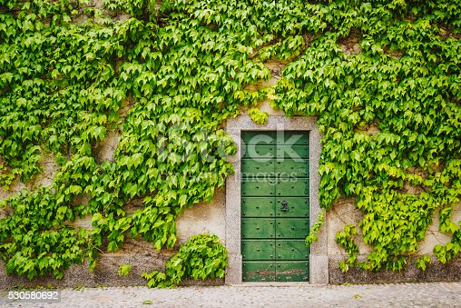 Ivy plant around wooden green gate, Lake Como district, Varenna town, Italy