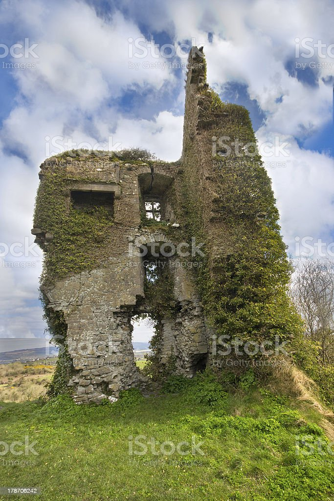 Ivy Covered Medieval Castle Ruins stock photo