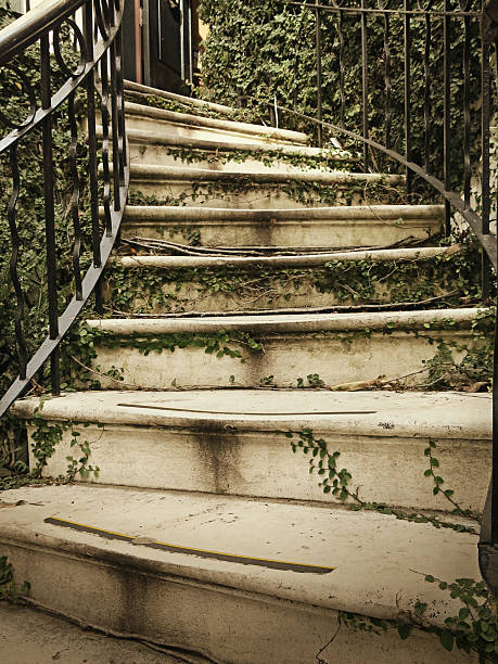 Ivy Covered Savannah Curved Staircase and Black Railing stock photo