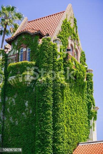 Ivy covered tower at the San Jose State University; San Jose, California