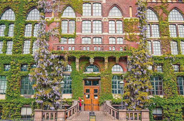 ivy covered university library of lund, sweden - lund stock photos and pictures