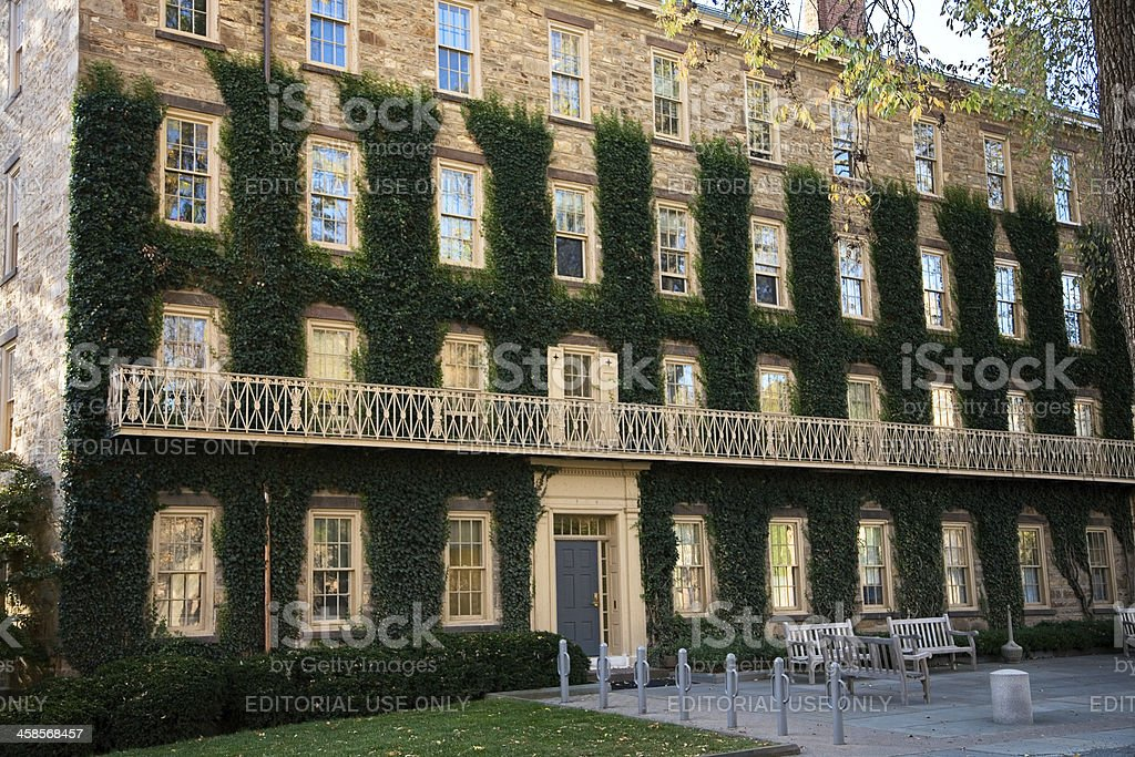 Ivy Covered Walls at Princeton University stock photo