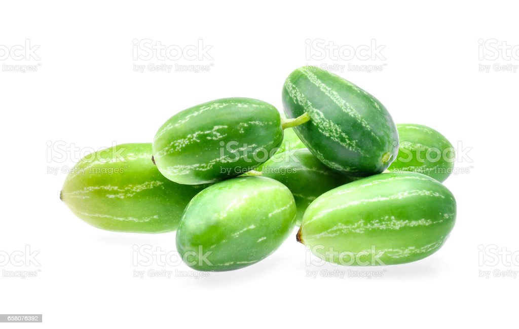 Ivy gourd, Coccinia grandis, Family Cucurbitaceae from central of Thailand royalty-free stock photo