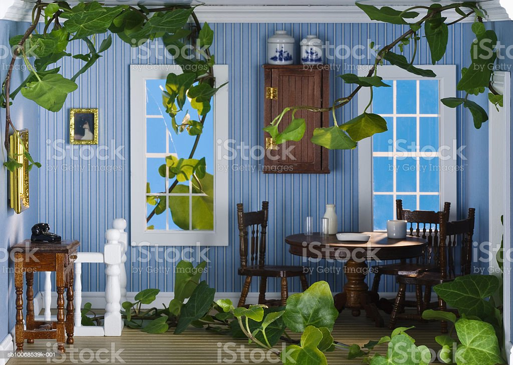 Ivy growing inside model house, close-up royalty free stockfoto