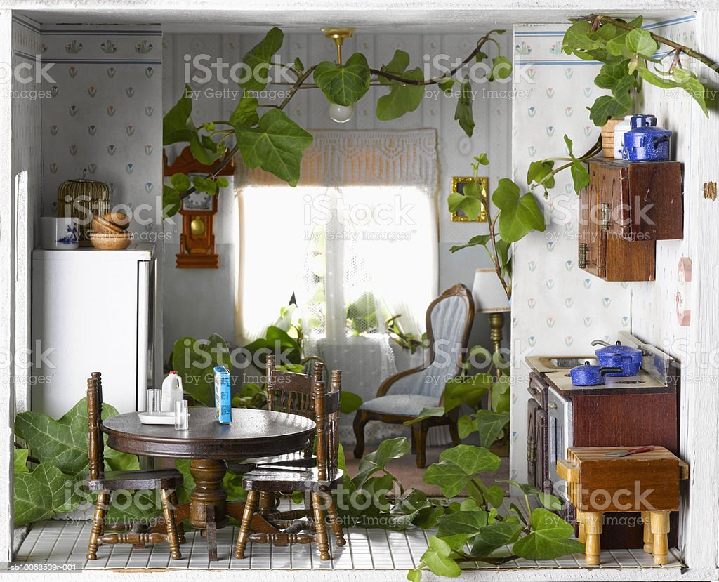 Ivy growing inside model house, close-up royalty-free stock photo