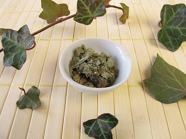Ivy, Hedera folium stock photo
