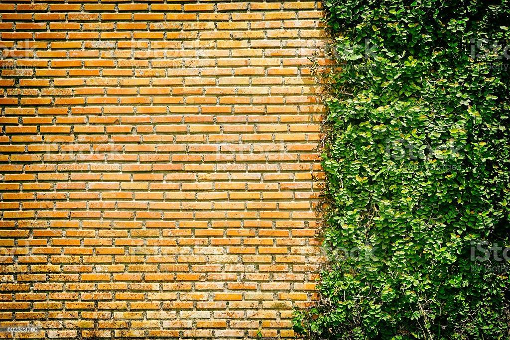 Dorable Decorative Garden Wall Bricks Vignette - Art & Wall Decor ...