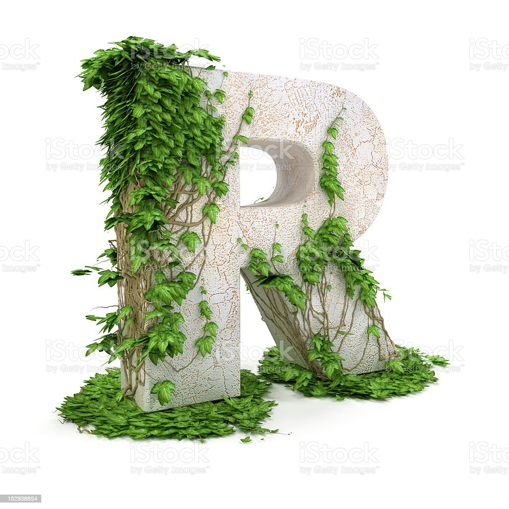 Ivy letter R isolated on white background. royalty-free stock photo