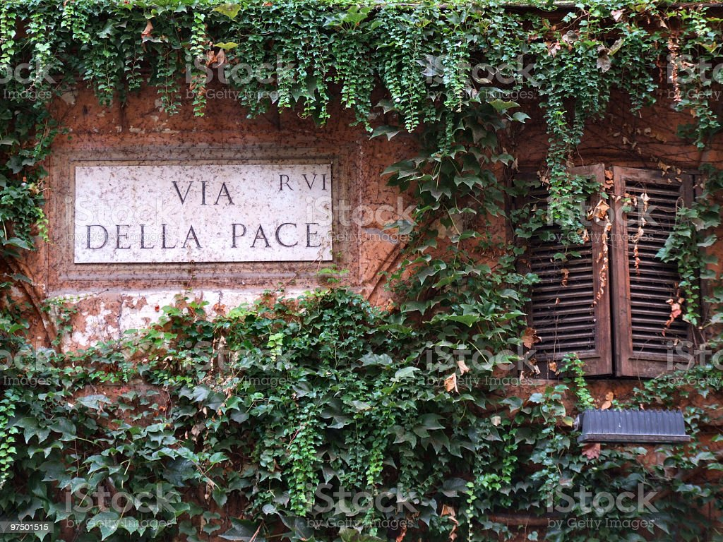 Ivy or vine covered wall in Rome royalty-free stock photo
