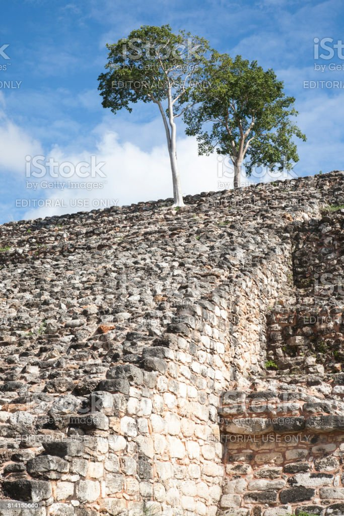 Izamal: Kinich Kak Moo Stone and Trees 2 stock photo