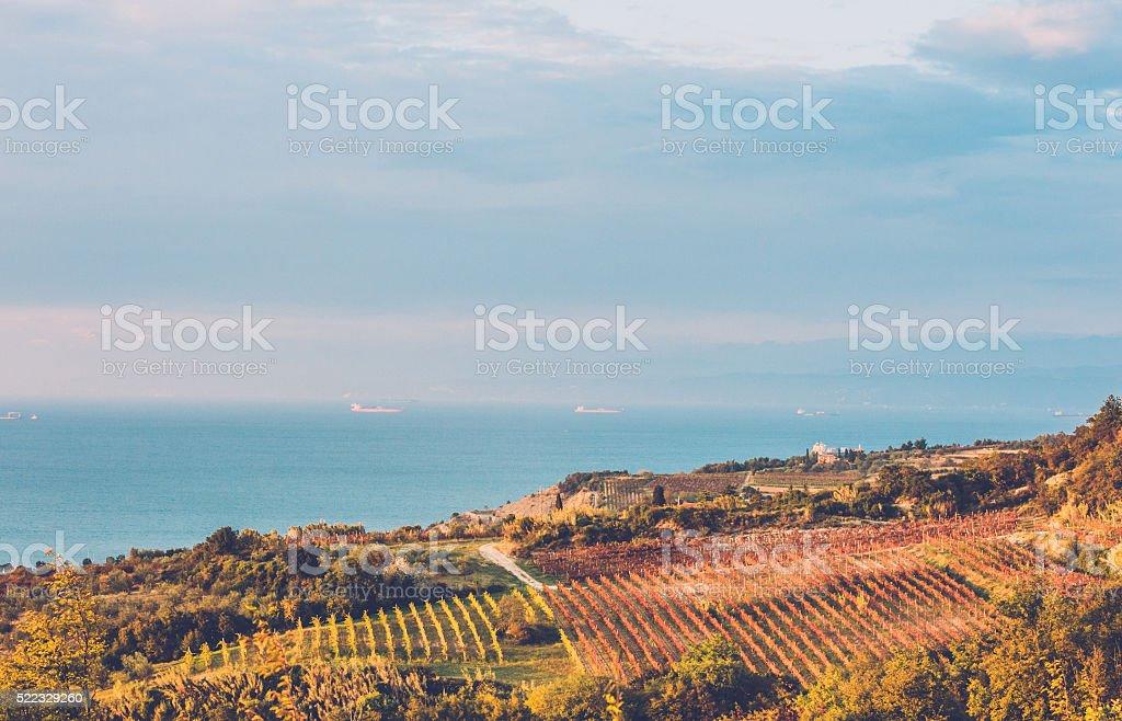 Izola, Slovenia stock photo