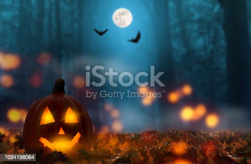 jack lantern in the halloween night