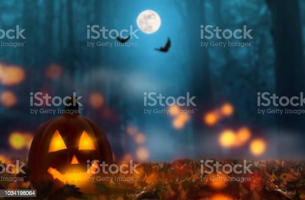 Jack lantern in the halloween night picture id1034198064?b=1&k=6&m=1034198064&s=612x612&h=rhk1pkkfi1jcqcyig bn6avj51oinbawwwwmpdhdm3c=