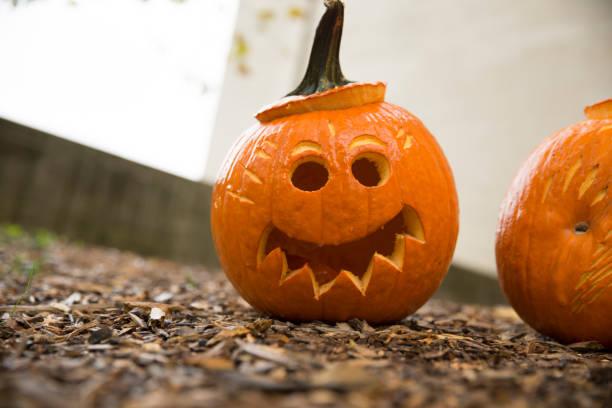 jack-o-laternen schneiden in kürbisse für halloween - schnitzmesser stock-fotos und bilder