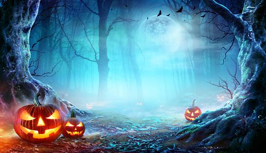 Halloween Pumpkins Smiling In Mist Forest At Moonlight