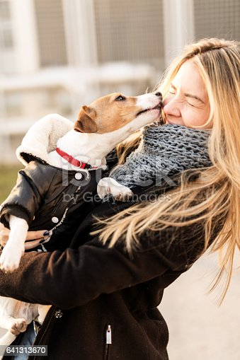 istock Jack Russell puppy and his owner enjoying 641313670