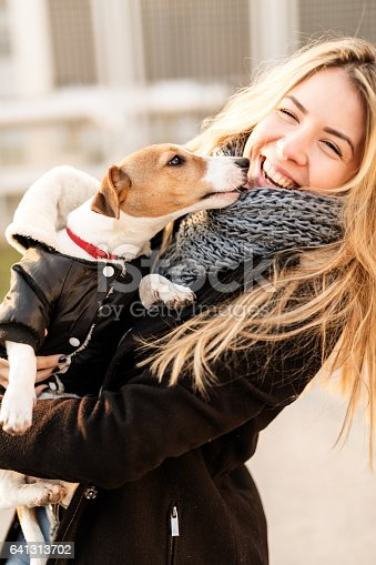 istock Jack Russell puppy and his owner enjoying 641313702