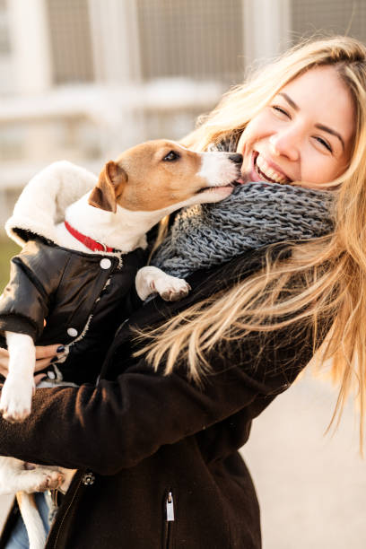 jack russell puppy and his owner enjoying - milan2099 stock photos and pictures