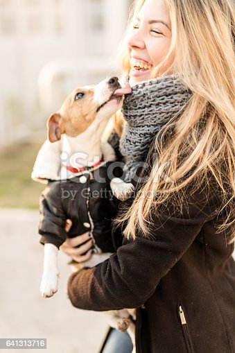 istock Jack Russell puppy and his owner enjoying 641313716