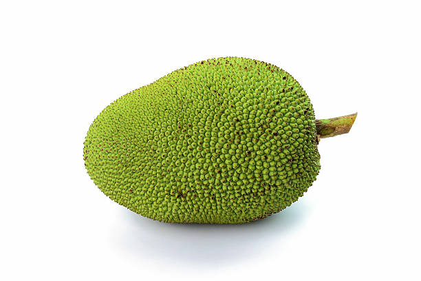 Jackfrucht, isoliert auf weißem Hintergrund – Foto