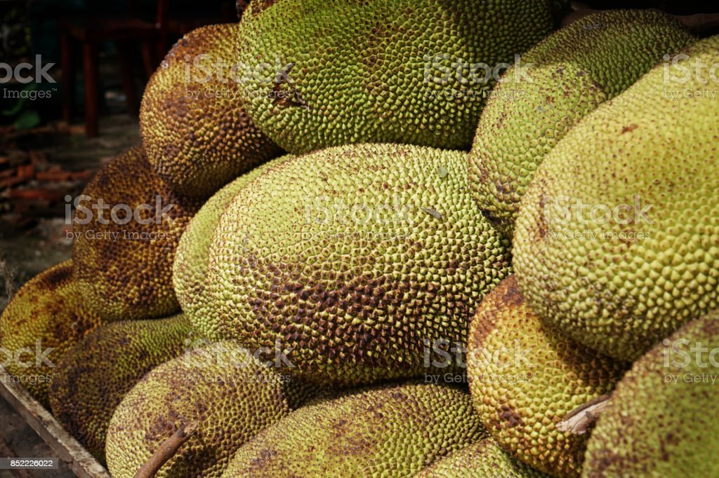 jackfruit stock photo