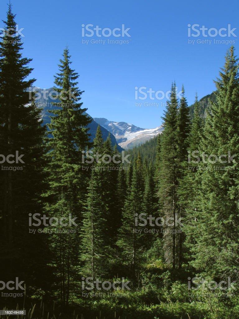 Jackson Glacier, GNP, Montana royalty-free stock photo