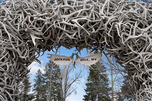 jackson hole sign hanging from an antler arch - antlers stock photos and pictures