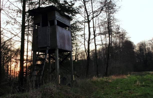 Jagdsitz Hochsitz in der Abenddämmerung am Waldrand hunting blind stock pictures, royalty-free photos & images