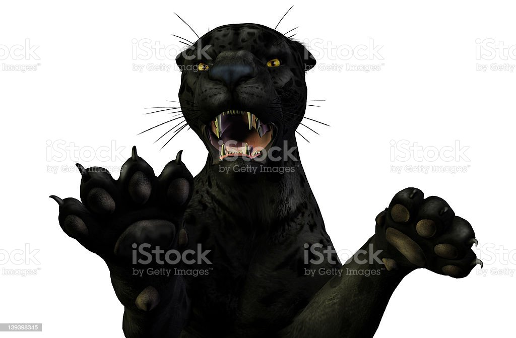 Jaguar Attacks - clipping path included stock photo