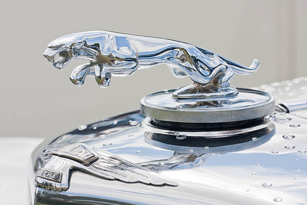 Jaguar bonnet ornament