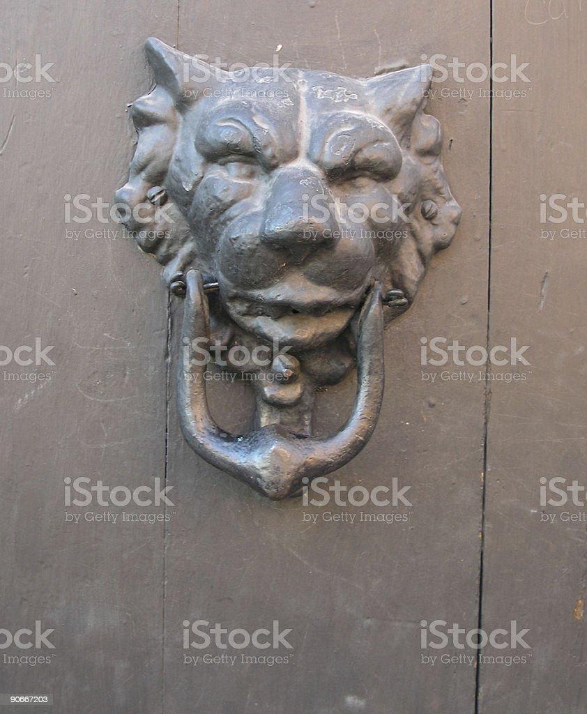 Animal, Jaguar, Spanish Currency, Undomesticated Cat, Animals In The Wild.  Jaguar Door Knocker ...