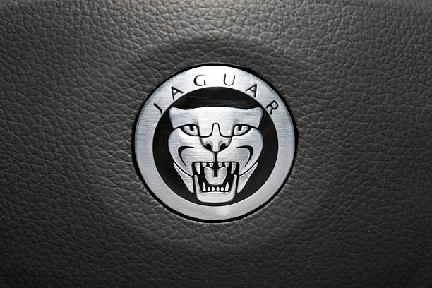 Jaguar Logo Nashville, USA - April, 16nd 2012: A close up photograph of the Jaguar luxury car steering wheel emblem, with silver growling jaguar face. jaguar car stock pictures, royalty-free photos & images