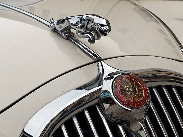 Royalty Free Jaguar Car Pictures Images And Stock Photos Istock