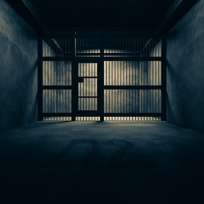 The cage has no windows in the dark 3d render.