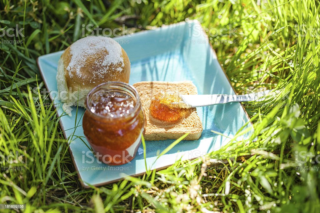 Jam and Bread on Grass stock photo