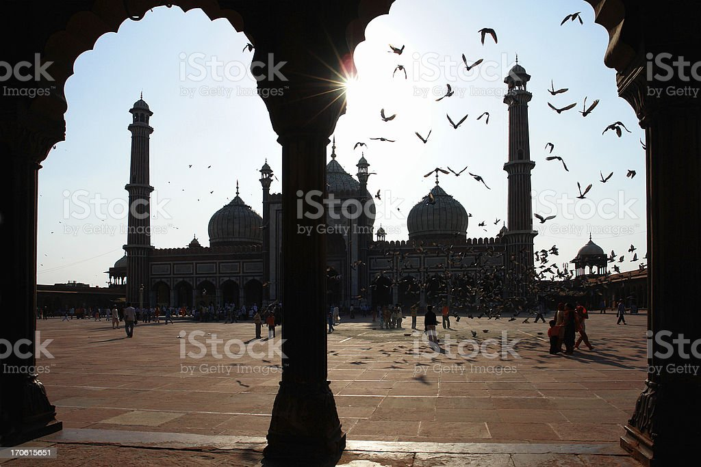 Jama Masjid Mosque, Delhi, India royalty-free stock photo