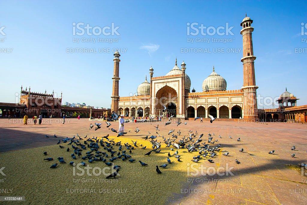 Jama Masjid Mosque, old Delhi, India. stock photo