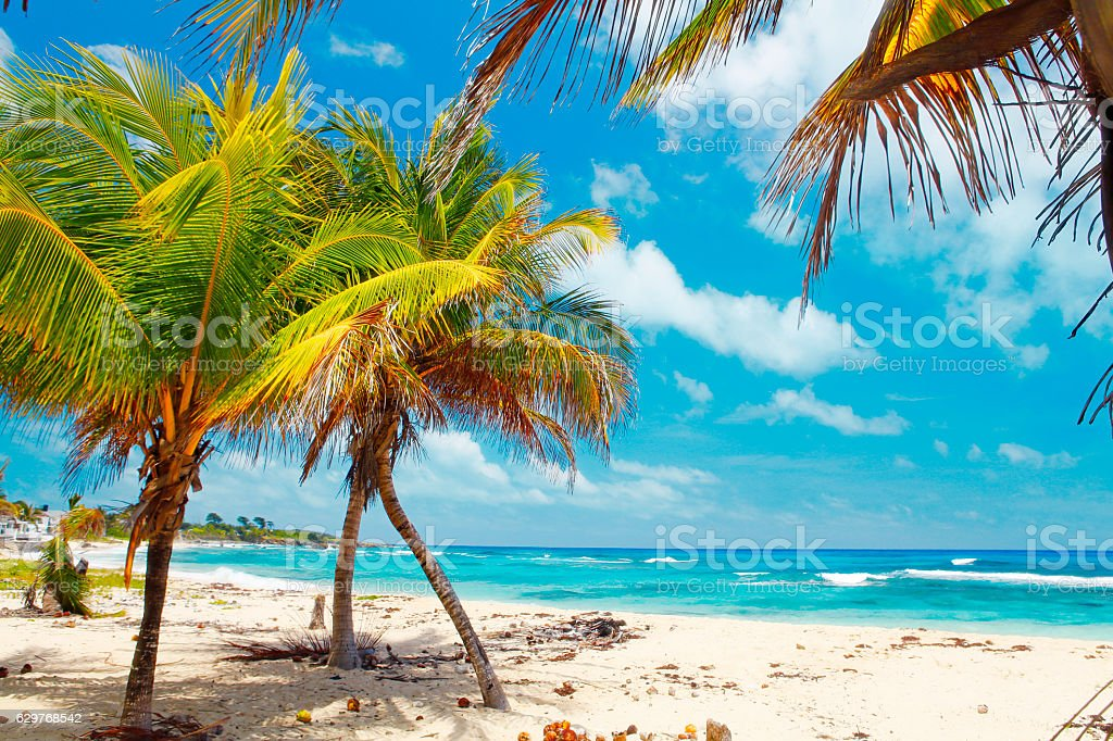 Jamaican beach stock photo
