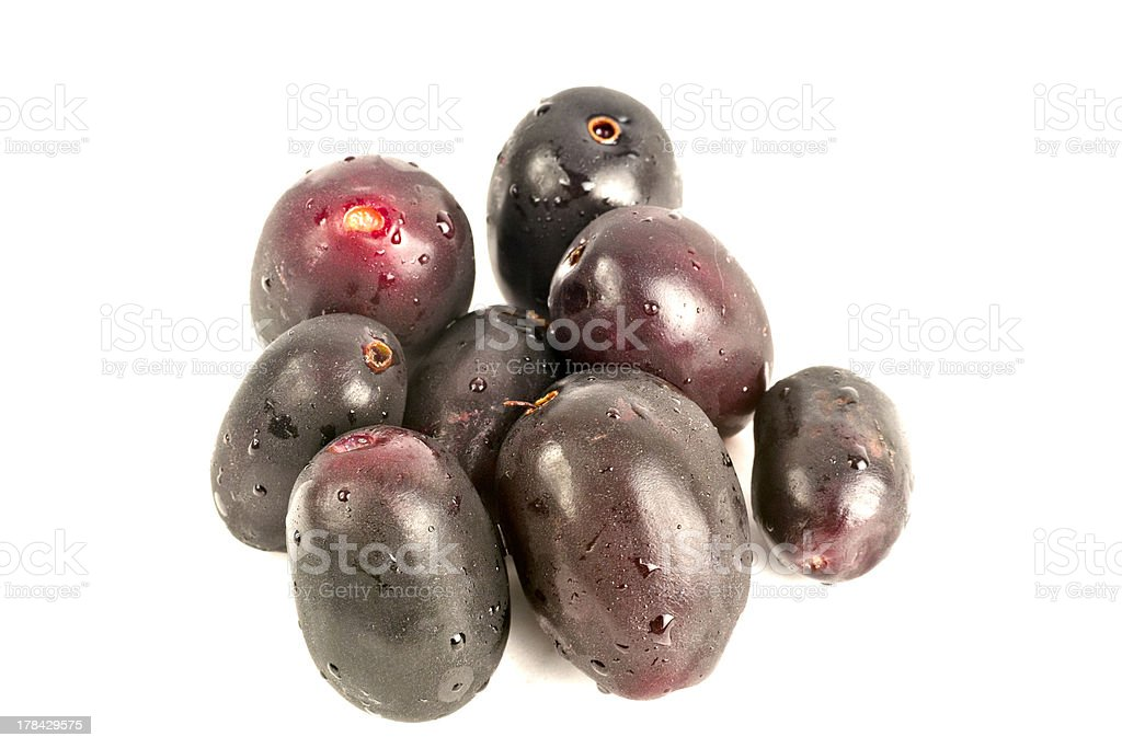 Jambul or Jamun (Syzygium cumini) royalty-free stock photo