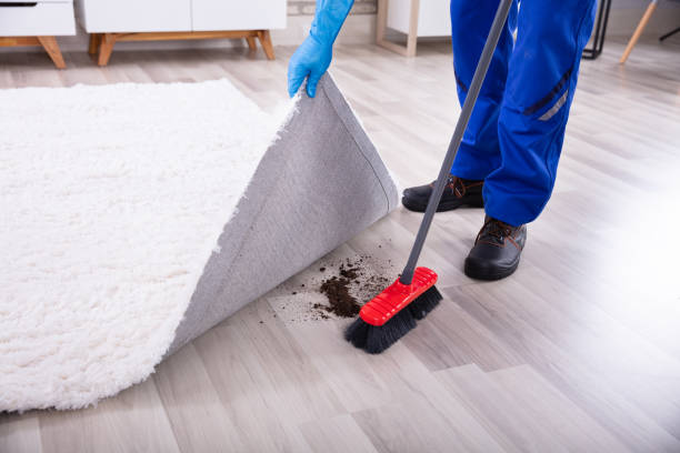 janitor cleaning dirt under the carpet - sweeping stock pictures, royalty-free photos & images