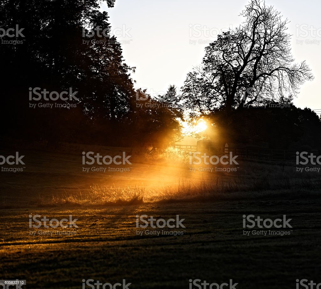 January sunbeam onto a field stock photo