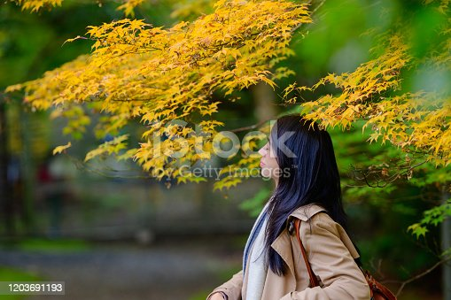 woman trorist traveller loves and enjoy emotion the nature of season change, Travel and visit Japan in Autumn