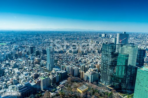 Japan cityscape bird eye view at noon Tokyo