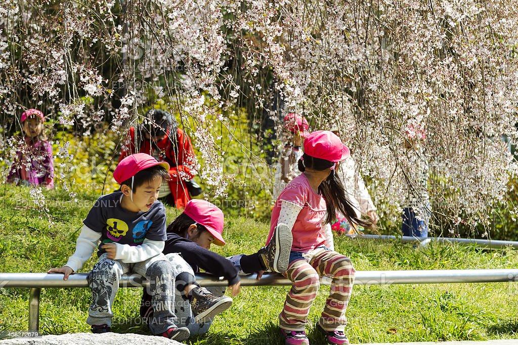Di Heian Santuario, Kyoto, Giappone - foto stock