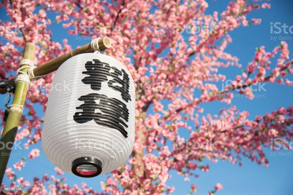 Lanterne Traditionnelle Au Japon Avec Le Mot Japonais Sakura Fleur