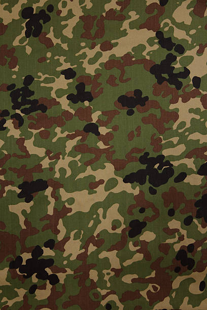 Japanese armed force flecktarn camouflage fabric texture backgro stock photo